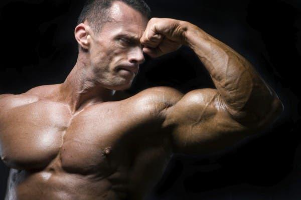 biceps y torso