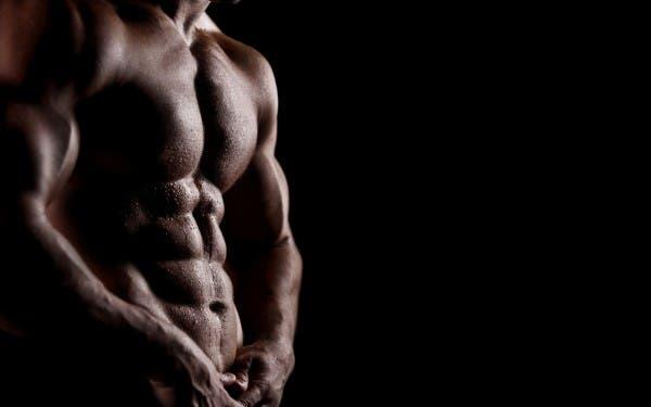 cuerpo definicion