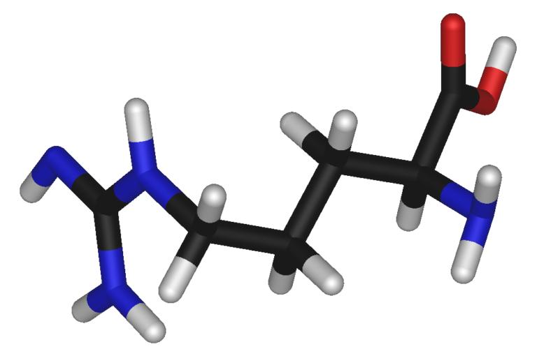 ¿funciona la l-arginina?
