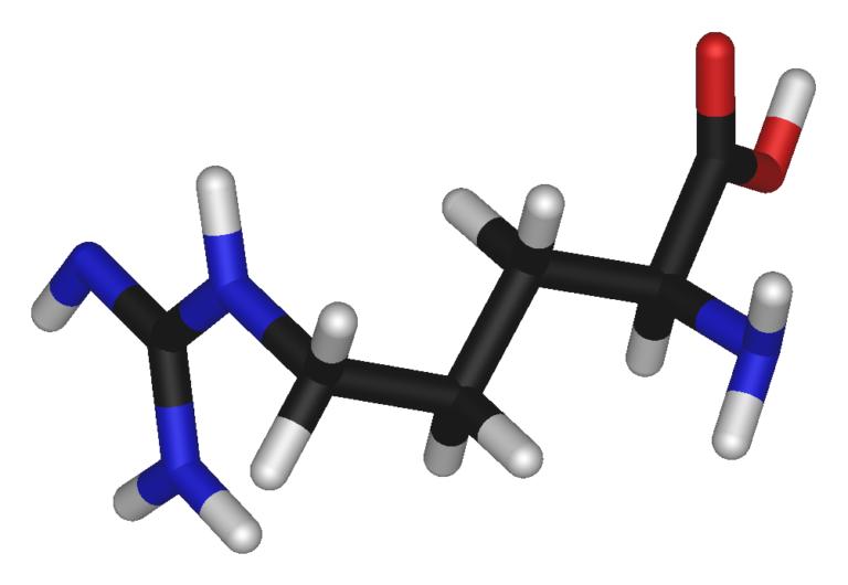 l-arginina óxido nítrico
