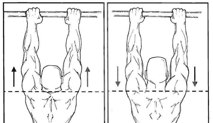 hombros durante las dominadas