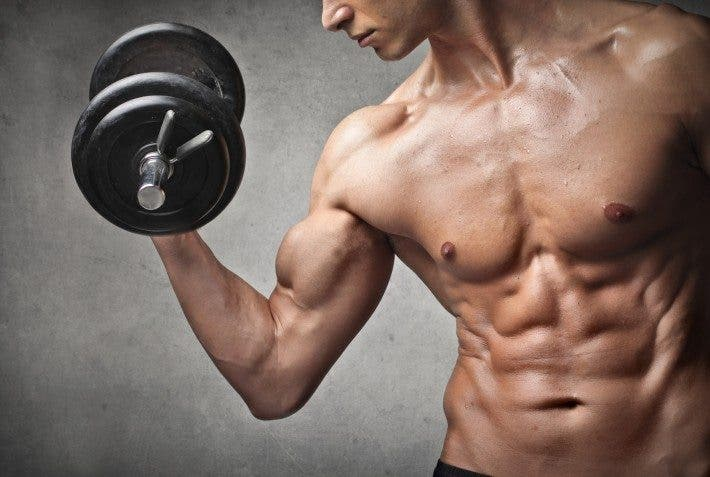 crecimiento de masa muscular