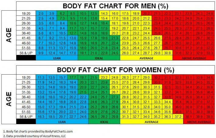 normal body fat percentage 32 year old female