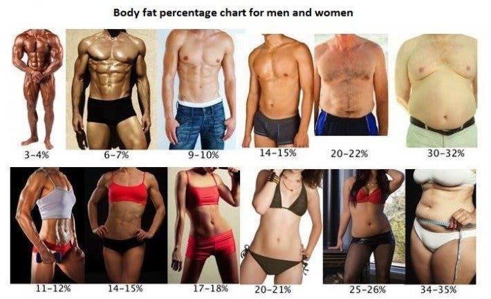 Resultado de imagen de porcentaje de grasa