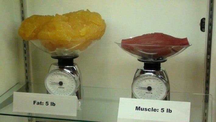 la grasa no pesa más
