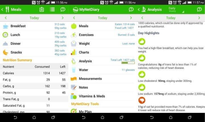 My Net Diary app