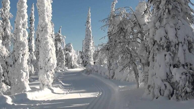 Temperatura del esquí de fondo