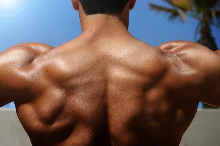 Cómo seguir una etapa de volumen muscular