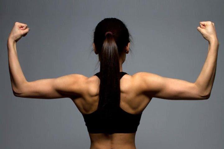 ¿Se pueden definir los músculos?