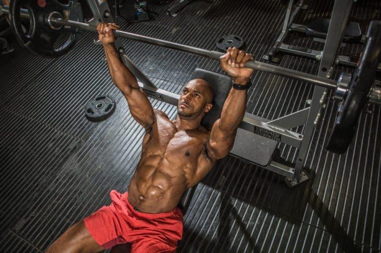¿qué determina si un músculo crece en longitud o en diámetro?