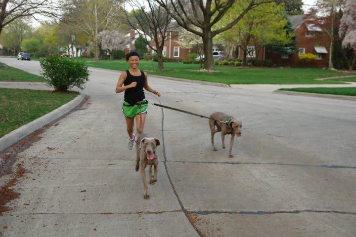 Razas de perro perfectas para practicar running