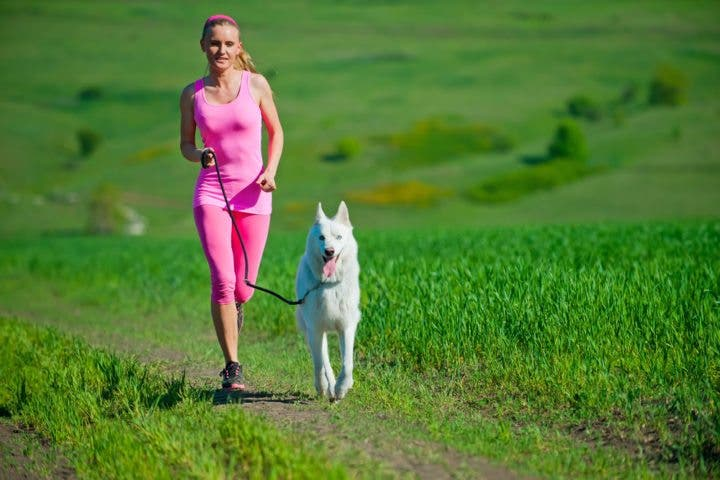 Mejores razas de perro para el running