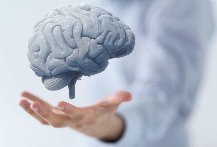 Resultado de imagen para Mejora la función cerebral.