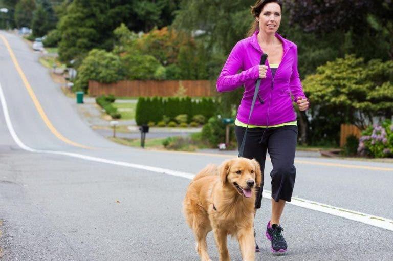 6 consejos que debes seguir antes de salir a correr con tu perro