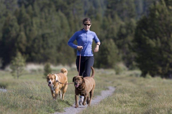 Consejos para practicar running con tu perro
