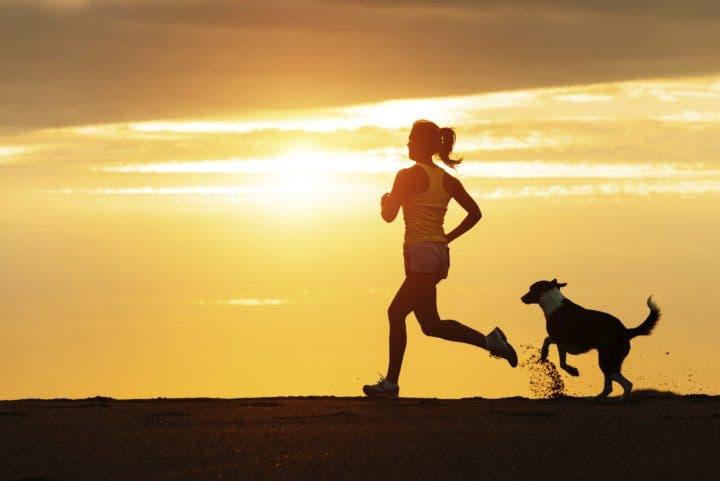 Cómo hacer ejercicio de manera segura junto a tu perro