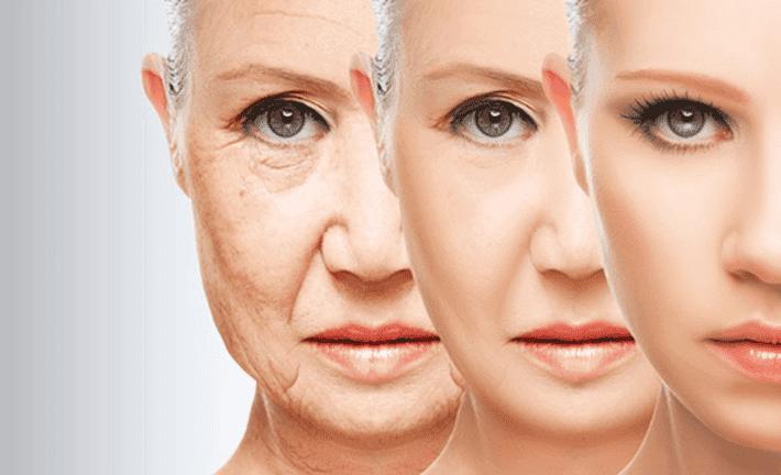 El tipo de dieta que puede acortar el envejecimiento según la ciencia.