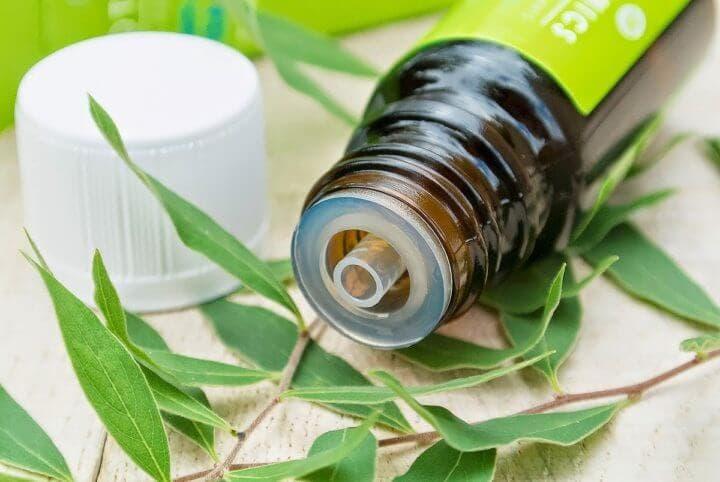 Maneras de usar el aceite de árbol de té