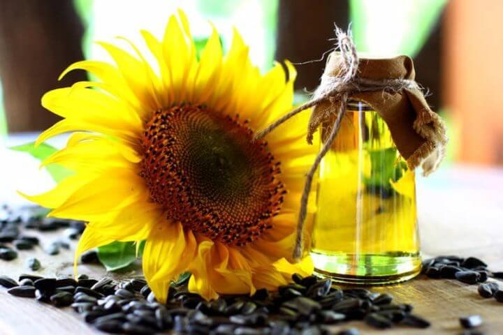 Cuánta vitamina E hay en el aceite de girasol