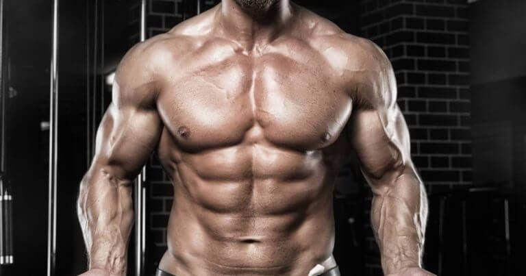 Qué comer antes de dormir para ganar músculo