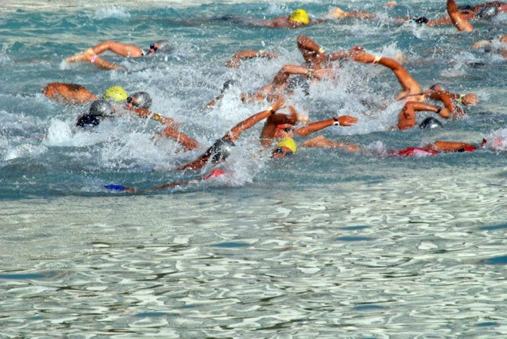 La clave para ganar una competición en aguas abiertas