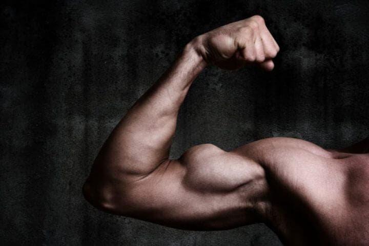 ¿Es efectivo el óxido nítrico para la recuperación muscular?