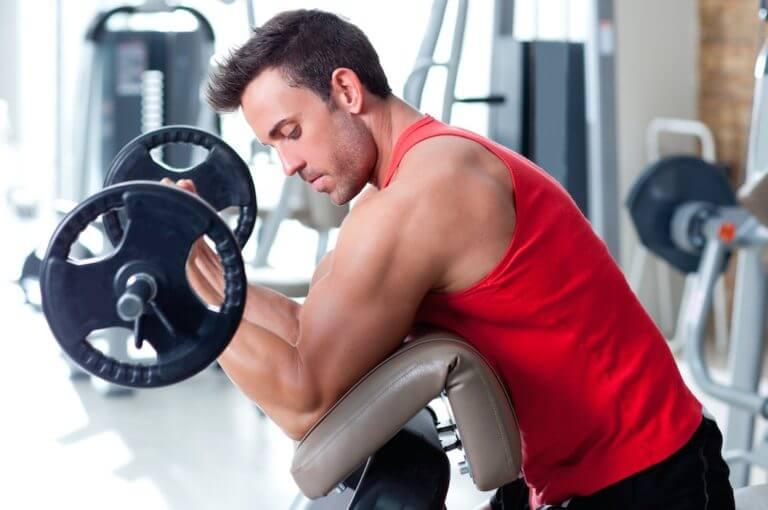 ¿por qué no puedes transformar la grasa en músculo?