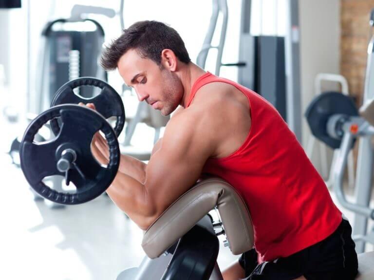 ¿Se puede transformar la grasa en músculo?