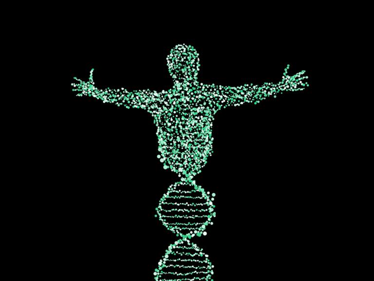Tus genes determinan cómo debes ponerte en forma