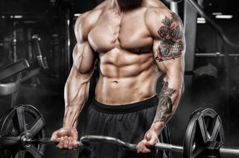 4 consejos para atletas con extremidades largas para ganar masa muscular