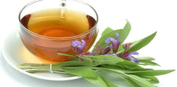 6 opciones de tés herbales para probar