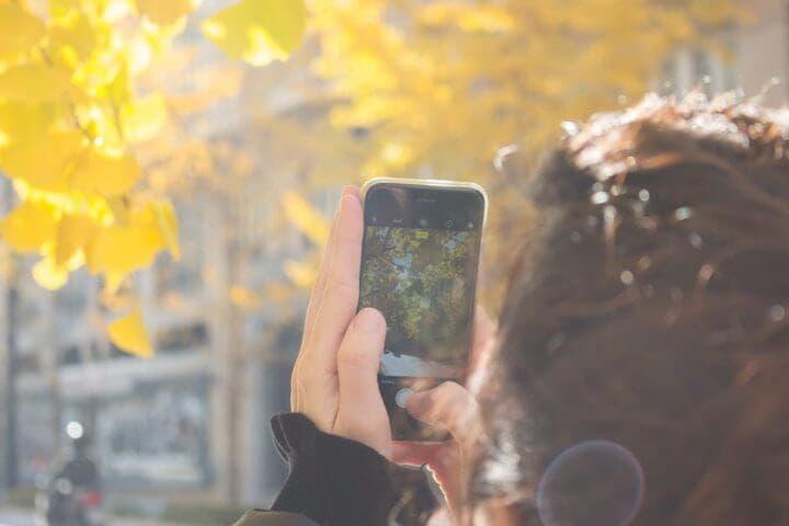 Calidad de la cámara de un iPhone 6S