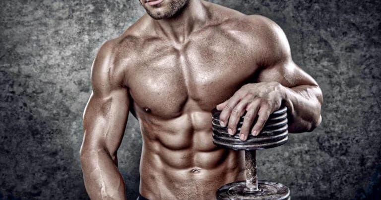 ¿Qué tipo de fibras propician la ganancia de músculo?