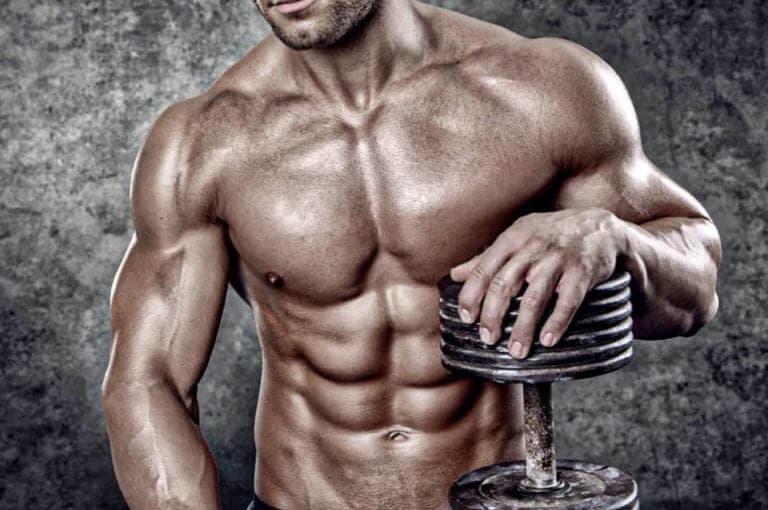 ¿qué tienen que ver los tipos de fibra muscular con la hipertrofia?