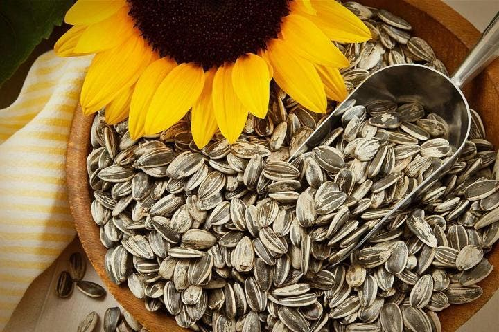 Las semillas de girasol aportan gran fibra soluble