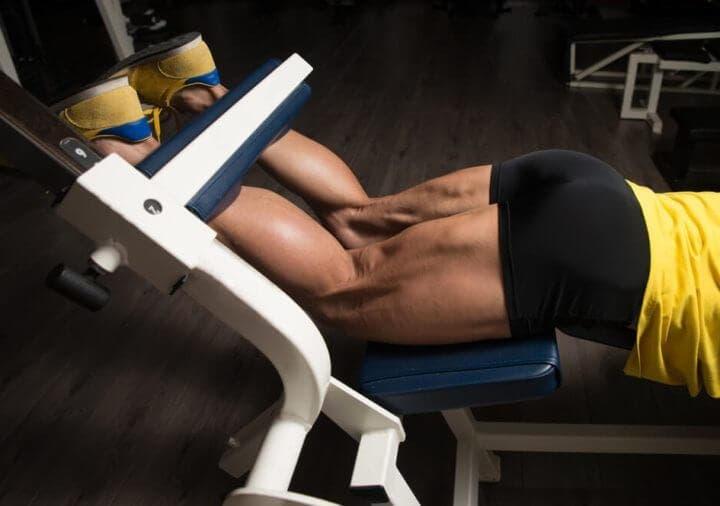 ¿Qué músculos componen los isquiotibiales?