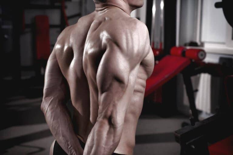 3 ejercicios de tríceps para esculpir tus brazos rápidamente