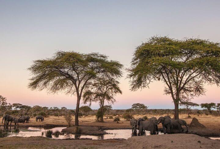 ¿Qué visitar en Botswana?