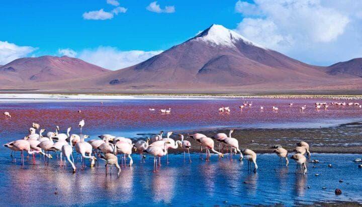 Atracciones turísticas en los Andes Bolivianos