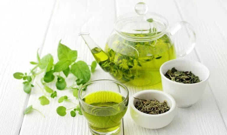 Características del extracto de té verde