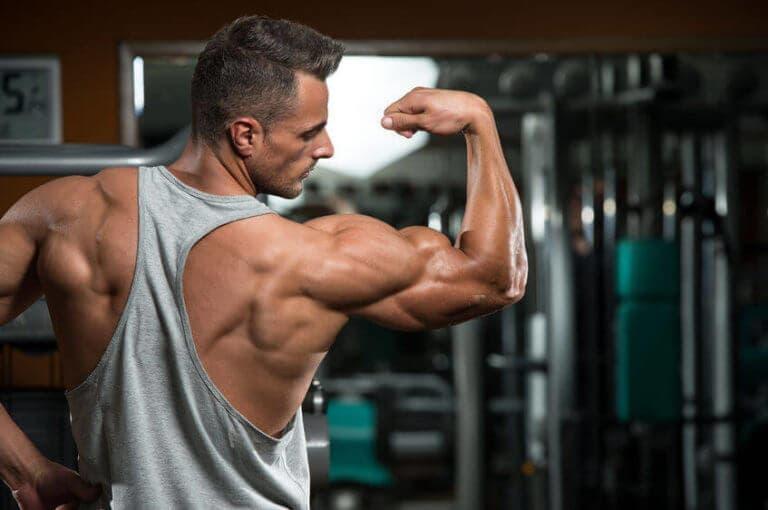 3 rutinas para conseguir unos tríceps más grandes