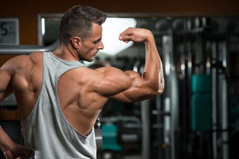 Cómo desarrollar tríceps más grandes