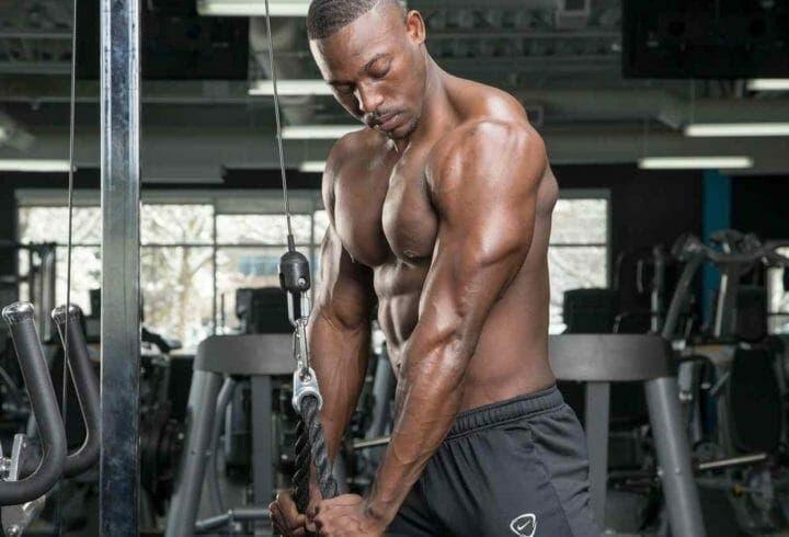 ¿Qué tipos de fibras musculares existen?