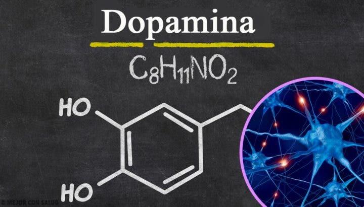 ¿Para qué sirve la dopamina?
