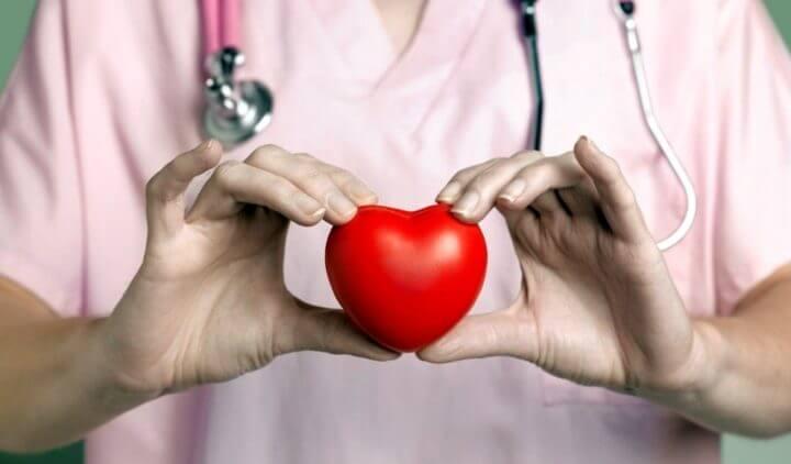 La vitamina K2 previene la calcificación de los vasos sanguíneos