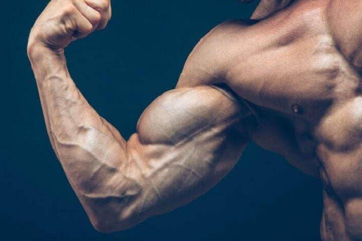 Construir músculos más alargados