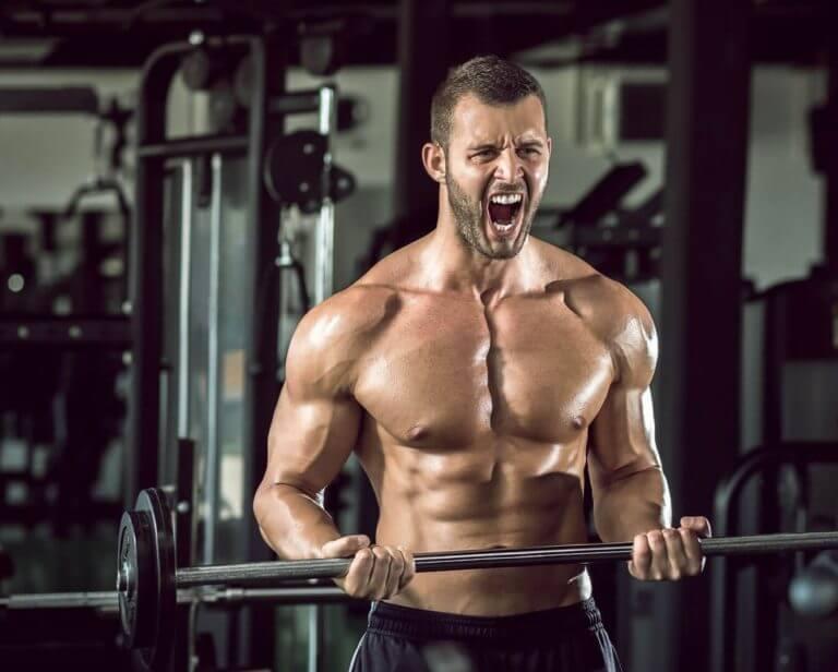 ¿Es posible modificar la forma de un músculo?