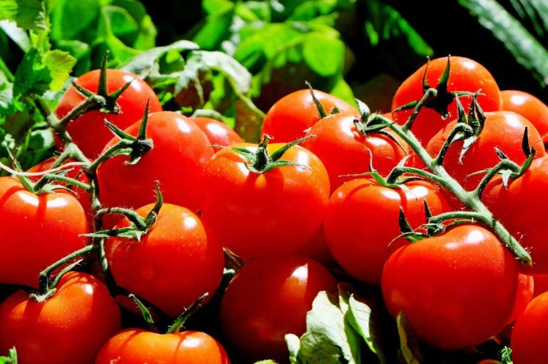 9 alimentos saludables cargados del sabor umami