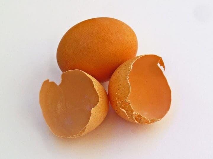 ¿Qué significan los diferentes códigos de los huevos?