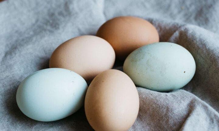 ¿Qué son los huevos de categoría A?